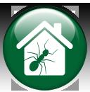 bug-icon2